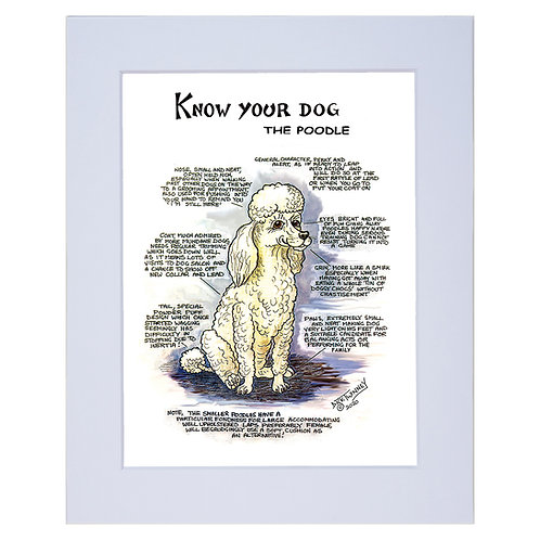 Poodle - A4 Mounted Print - Know Your Dog - Pack of 6
