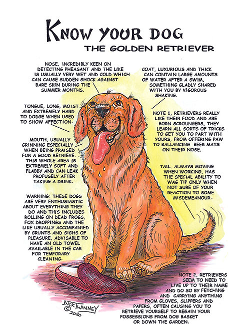 Golden Retriever - Greetings Card - Know Your Dog - Pack of 6