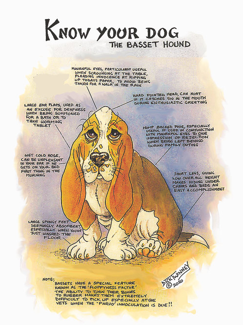 Basset - Greetings Card - Hound Know Your Dog - Pack of 6