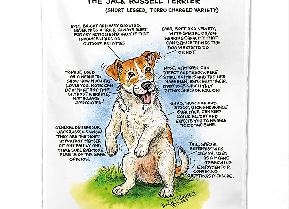 Jack Russell Turbo - Tea Towel - Know Your Dog - Pack of 6