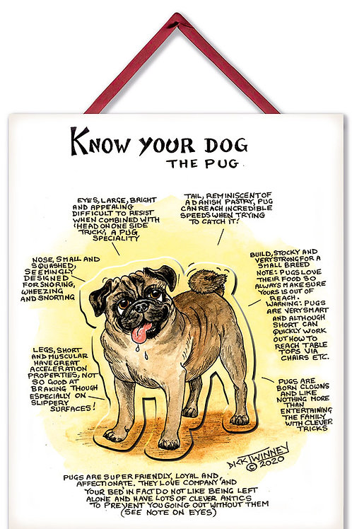 Pug - 3D Wall Plaque - Know Your Dog - Pack of 6