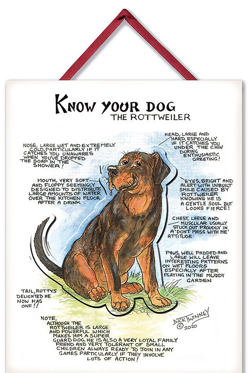 Rottweiler - 3D Wall Plaque - Know Your Dog - Pack of 6