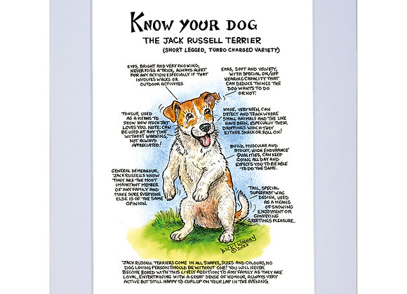 Jack Russell Turbo - A4 Mounted Print - Know Your Dog - Pack of 6