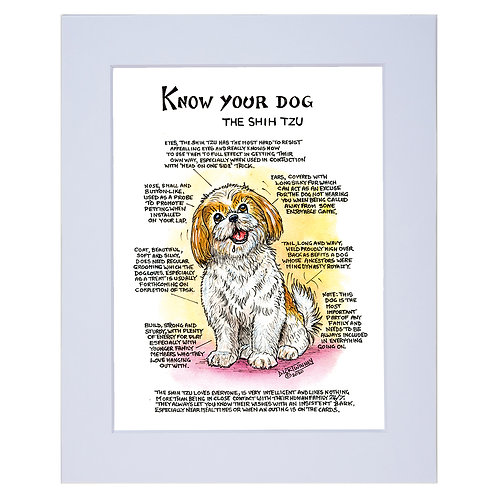 Shih Tzu - A4 Mounted Print - Know Your Dog - Pack of 6