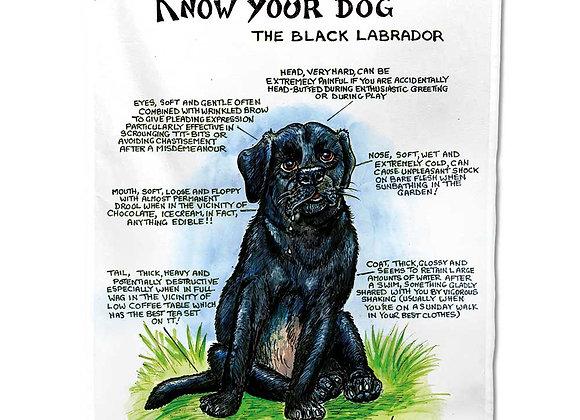 Black Labrador - Tea Towel - Know Your Dog - Pack of 6