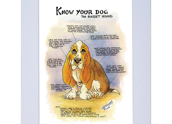 Bassett  - A4 Mounted Print - Know Your Dog - Pack of 6