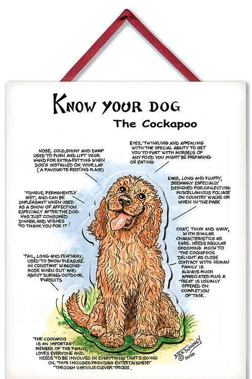 Cockapoo - 3D Wall Plaque - Know Your Dog - Pack of 6