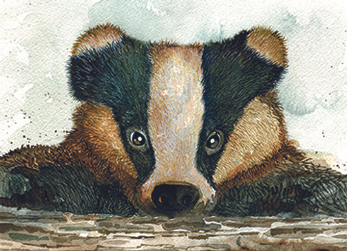 004701 Badger
