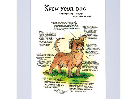 Rescue Dog Small - A4 Mounted Print - Know Your Dog - Pack of 6