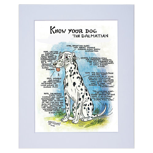 Dalmation - A4 Mounted Print - Know Your Dog - Pack of 6