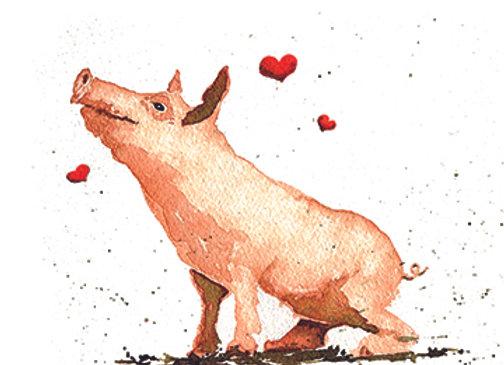 004710 Pig