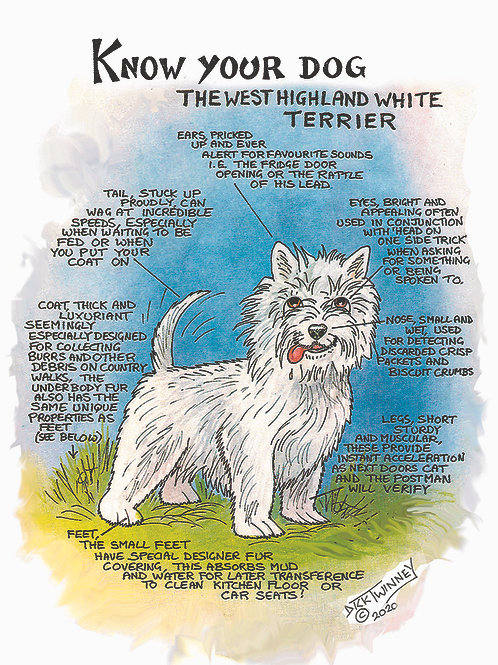 West Highland Terrier - Greetings Cards - Know Your Dog - Pack of 6