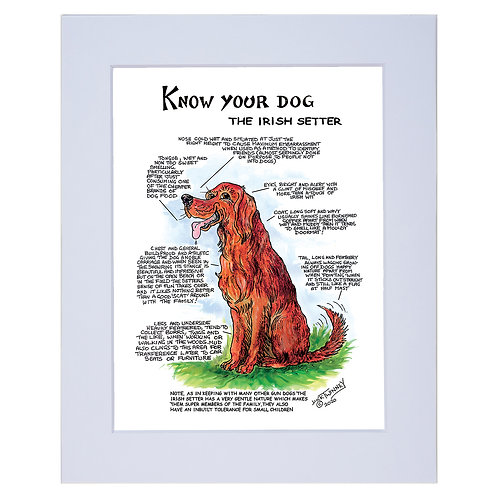 Irish Setter  - A4 Mounted Print - Know Your Dog - Pack of 6