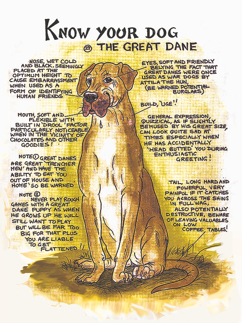 Great Dane - Wall Plaque - Know Your Dog - Pack of 6