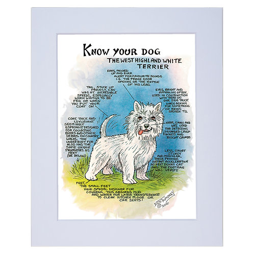 West Highland Terrier - A4 Mounted Print - Know Your Dog - Pack of 6