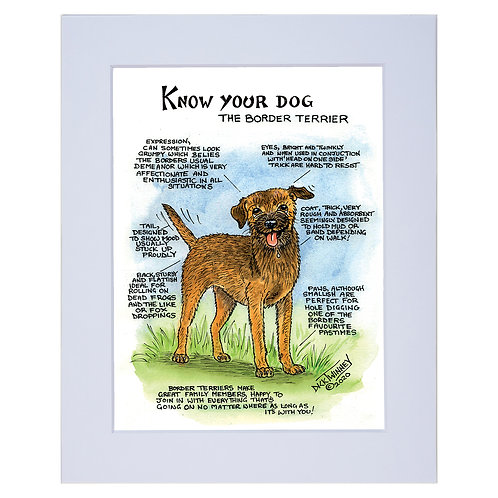 Border Terrier - A4 Mounted Print - Know Your Dog - Pack of 6