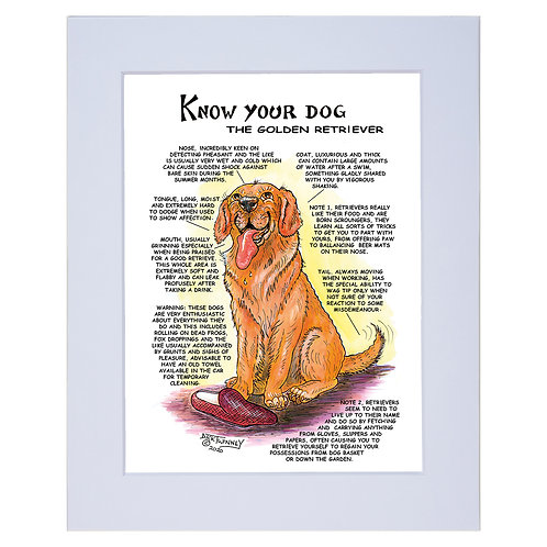 Golden Retriever - A4 Mounted Print - Know Your Dog - Pack of 6