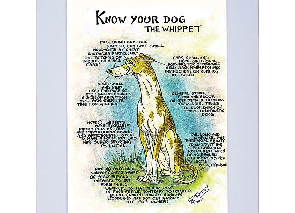 Whippet - A4 Mounted Print - Know Your Dog - Pack of 6