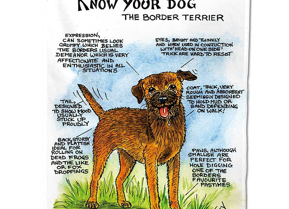 Border Terrier - Tea Towel - Know Your Dog - Pack of 6