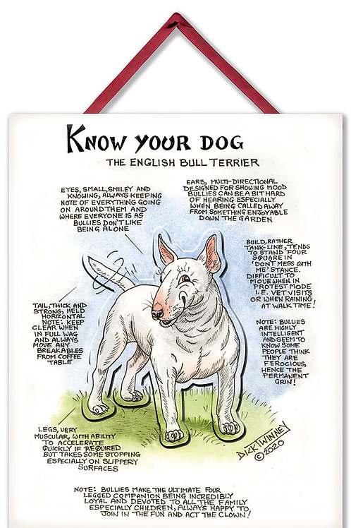 English Bull Terrier - 3D Wall Plaque - Know Your Dog - Pack of 6