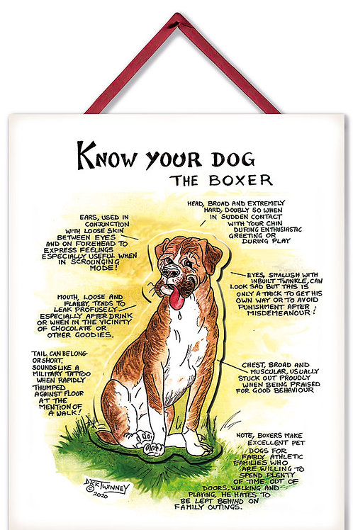 Boxer - 3D Wall Plaque - Know Your Dog - Pack of 6
