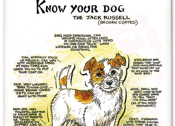 Jack Rusell Rough Coated - 3D Wall Plaque - Know Your Dog - Pack of 6