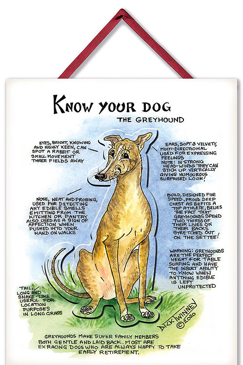 Greyhound - 3D Wall Plaque - Know Your Dog - Pack of 6