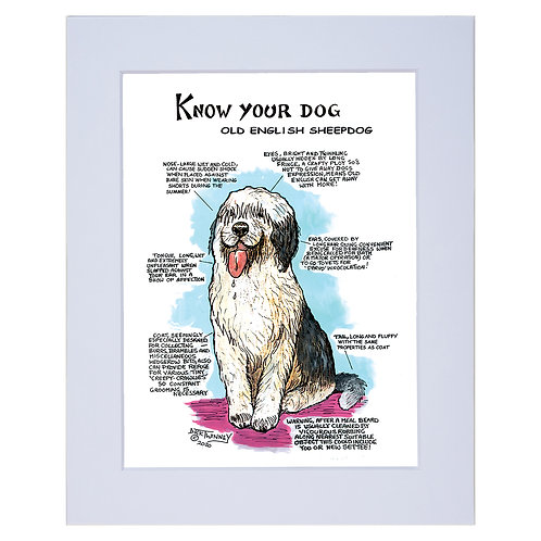 Old English Sheep Dog  - A4 Mounted Print - Know Your Dog - Pack of 6