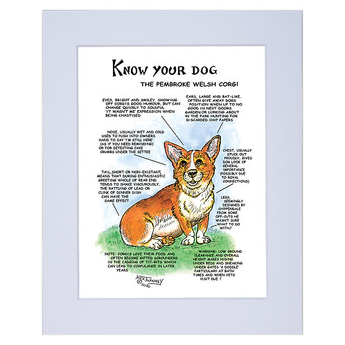 Corgi - A4 Mounted Print - Know Your Dog - Pack of 6