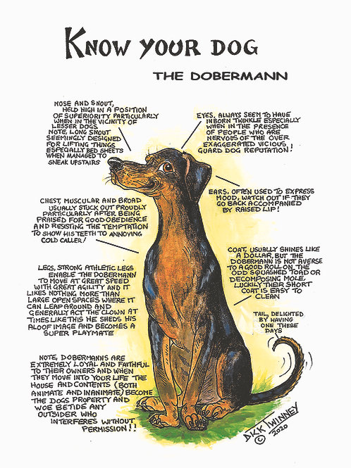 Doberman - Greetings Card - Know Your Dog - Pack of 6