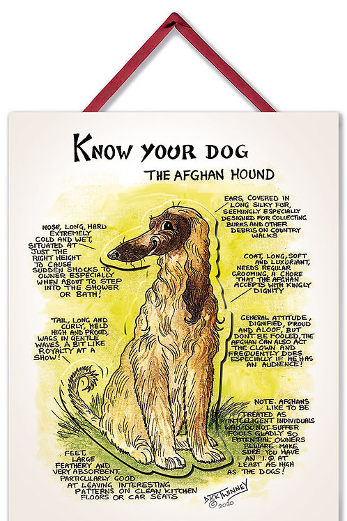 Afghan - 3D Wall Plaque - Know Your Dog - Pack of 6