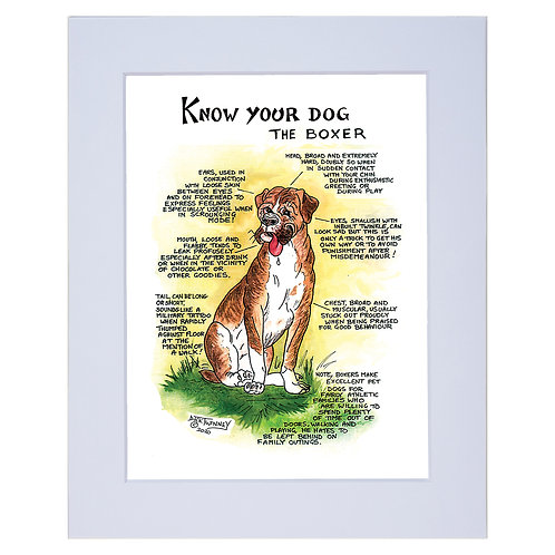 Boxer - A4 Mounted Print - Know Your Dog - Pack of 6
