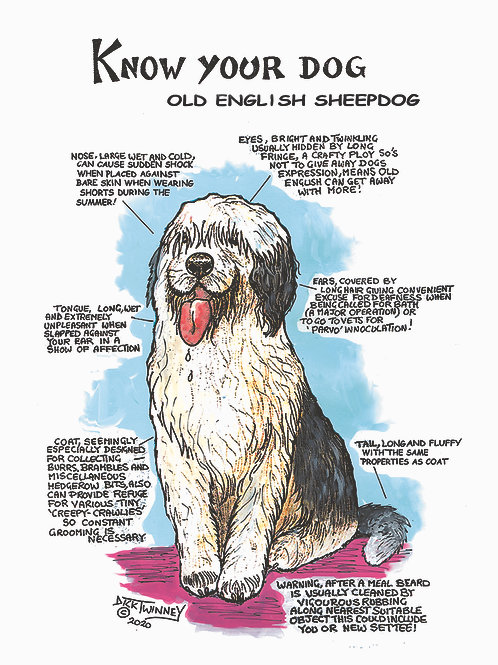 Old English Sheep Dog - Wall Plaque - Know Your Dog - Pack of 6