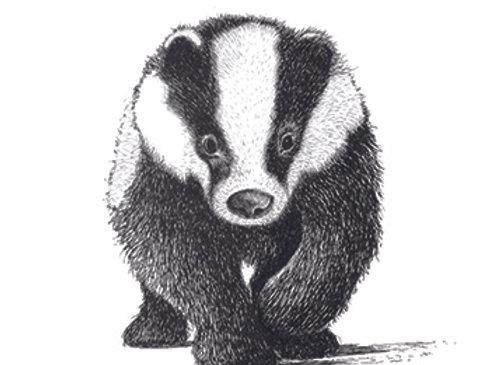 004621 Badger