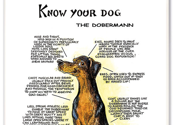 Doberman - 3D Wall Plaque - Know Your Dog - Pack of 6