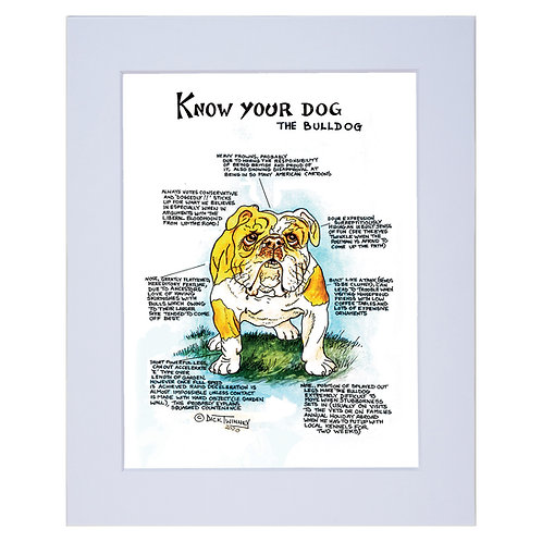 Bulldog - A4 Mounted Print - Know Your Dog - Pack of 6