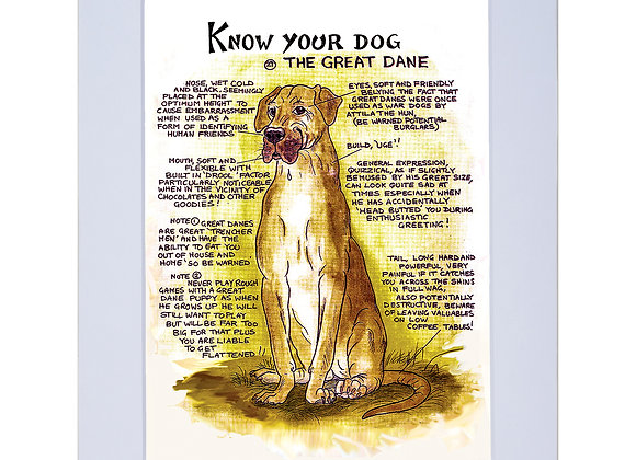 Great Dane - A4 Mounted Print - Know Your Dog - Pack of 6