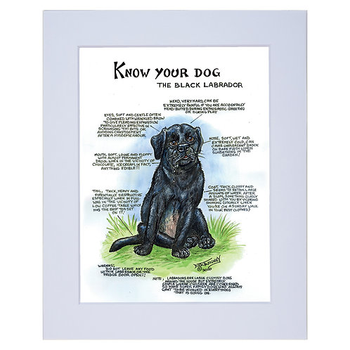 Black Ladbrador - A4 Mounted Print - Know Your Dog - Pack of 6