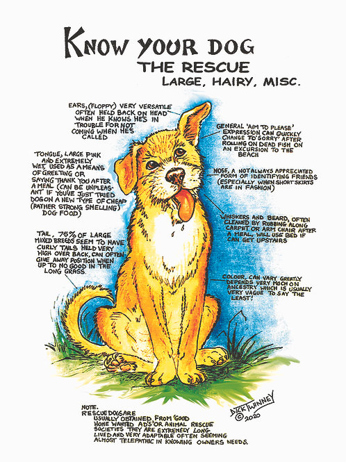 Rescue Dog Large - Greetings Card - Know Your Dog - Pack of 6