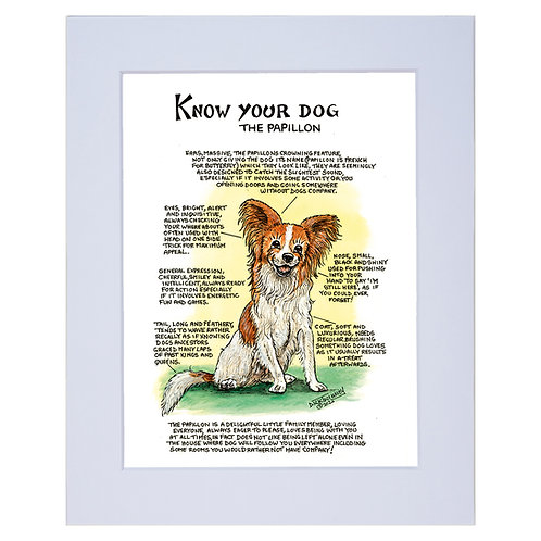 Papillion - A4 Mounted Print - Know Your Dog - Pack of 6