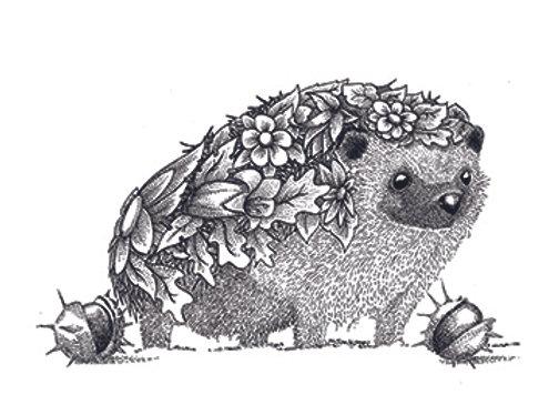 004632 Hedgehog
