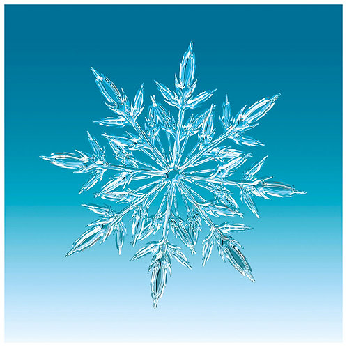 Glass Coaster - Christmas  - Art2glass UK - Pack of 6