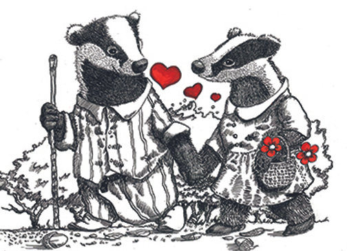 004702 BP2 Badger Couple