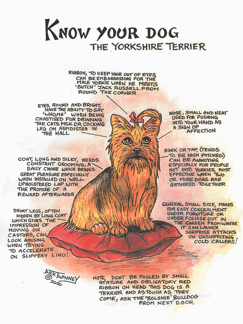 Yorkshire Terrier - Wall Plaque - Know Your Dog - Pack of 6