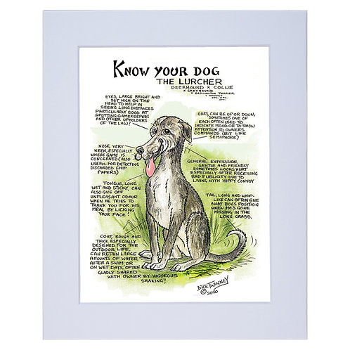 Lurcher  - A4 Mounted Print - Know Your Dog - Pack of 6