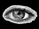 The webhub logo