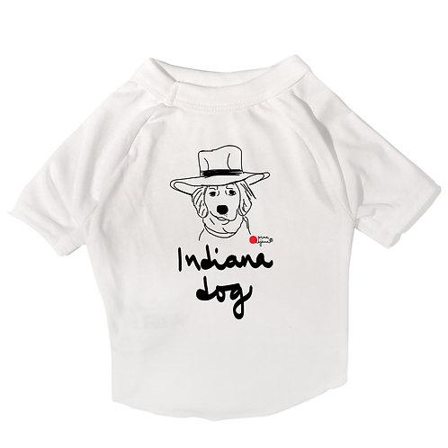 Indiana Dog