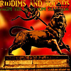 Riddims And Sounds From Dubroom Selector