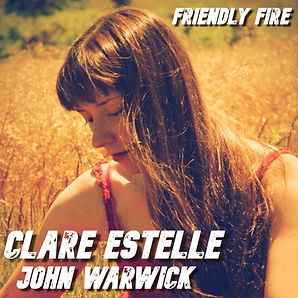 Friendly Fire Cover Art.jpeg
