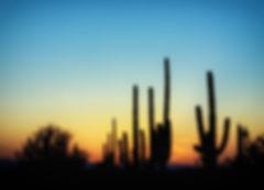 landscape-nature-horizon-silhouette-cactus-cloud-951360-pxhere.com.jpg